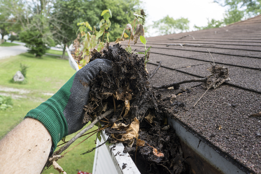Gutter Cleaning Repair Amp Installation Kalamazoo